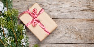 Learn More About The Giving Tree Gift Drive