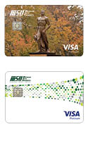 Platinum Visa Card Styles