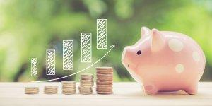 Savings Goal Image